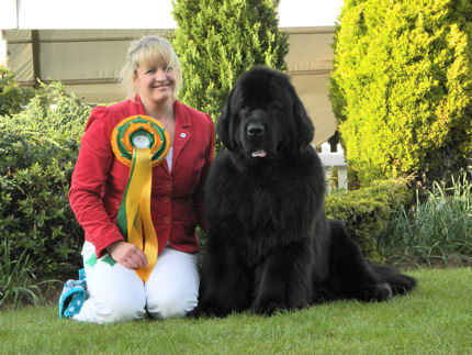 Stride Best in Show at Birmingham National